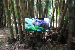 Zheng Bo, Pteridoohilia 1, 2016 – ongoing, Video, Duration 17min 14sec. Photo: Wolfgang Trager; Courtesy: Manifesta 12 Palermo and the artist