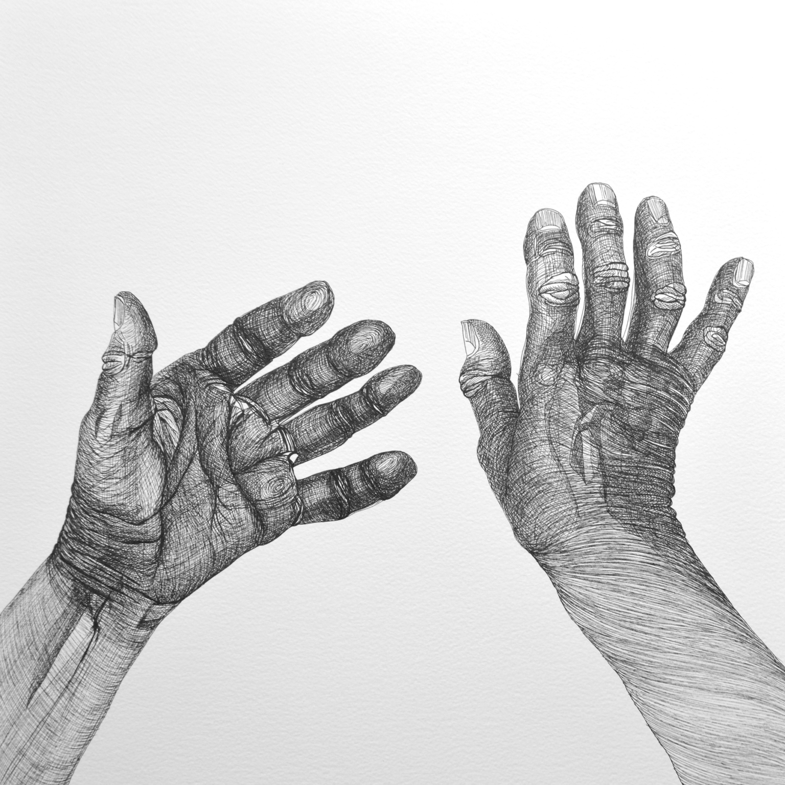 Cally Trench, Hands 4 (2018), Ink on paper, 40 x 40 cm