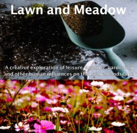 Lawn and Meadow