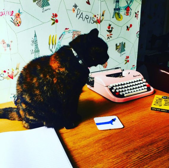 a cat sits on a desk nest to a pink typewriter in front of Paris wallpaper