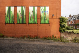 4 large canvases. Showing the emergence of a damselfly.