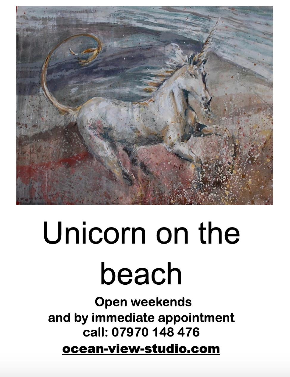 unicorn on the beach