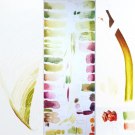 Ariseama costatum watercolour painting process by Marianne Hazlewood - on show now at the Open Eye Gallery Edinburgh