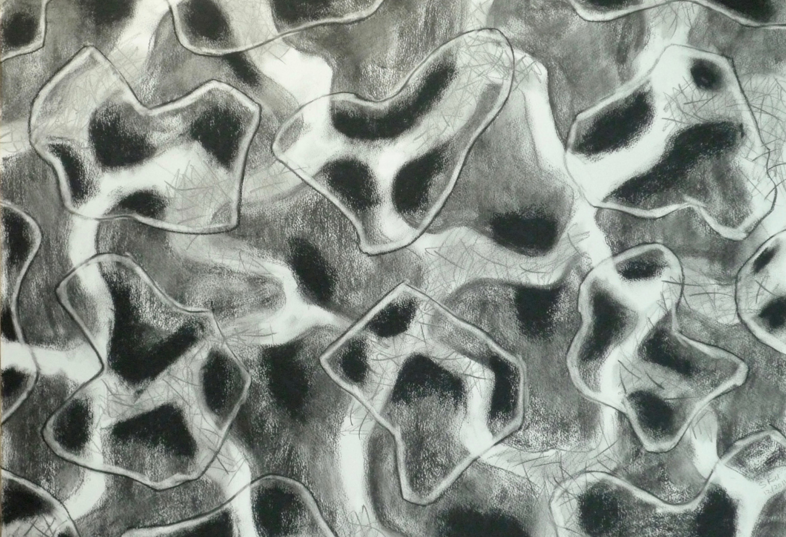 Haze phase, Charcoal on paper drawing, 2012. 76cm x 52cm