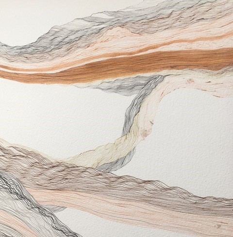 Drawing using fine lines in various sombre colours that flow across a white background and create rope-like structures.