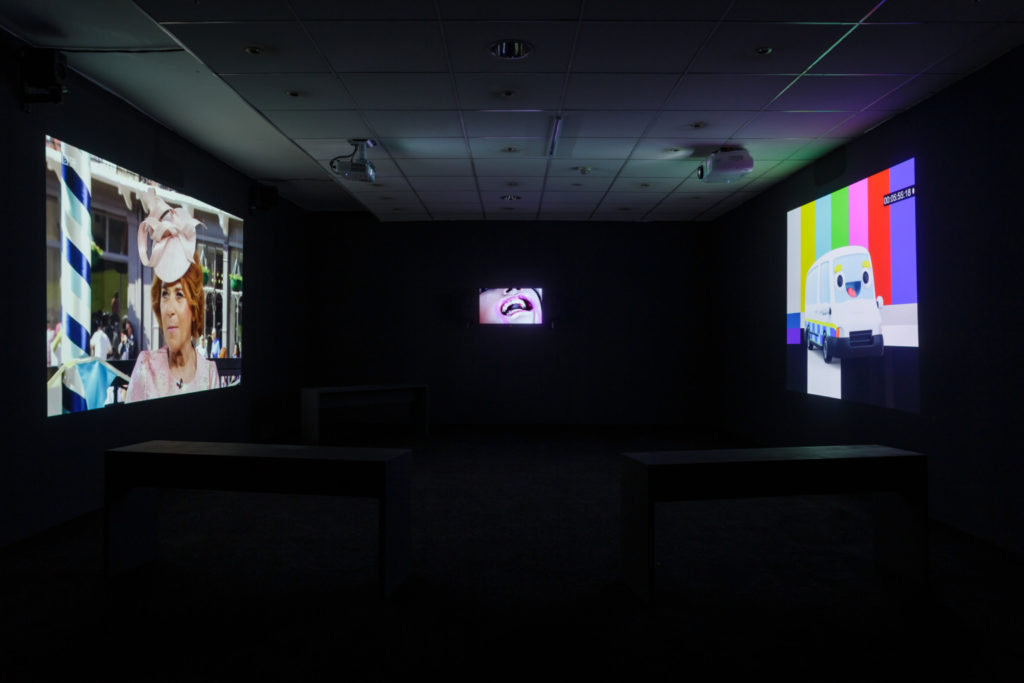 Film installation with 3 screens projected on walls. The left-hand screen features a portrait of a figure wearing a pink hat; the centre- screen is a close-cropped image of a face focussed on the mouth; the right-hand screen shows an animated anthropomorphic immigration van which has a happy cartoon face on its windscreen.