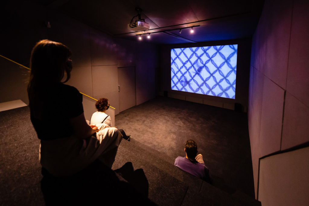 Interior view of a small cinema space with a projected image featured blue diagonally crossing lines.