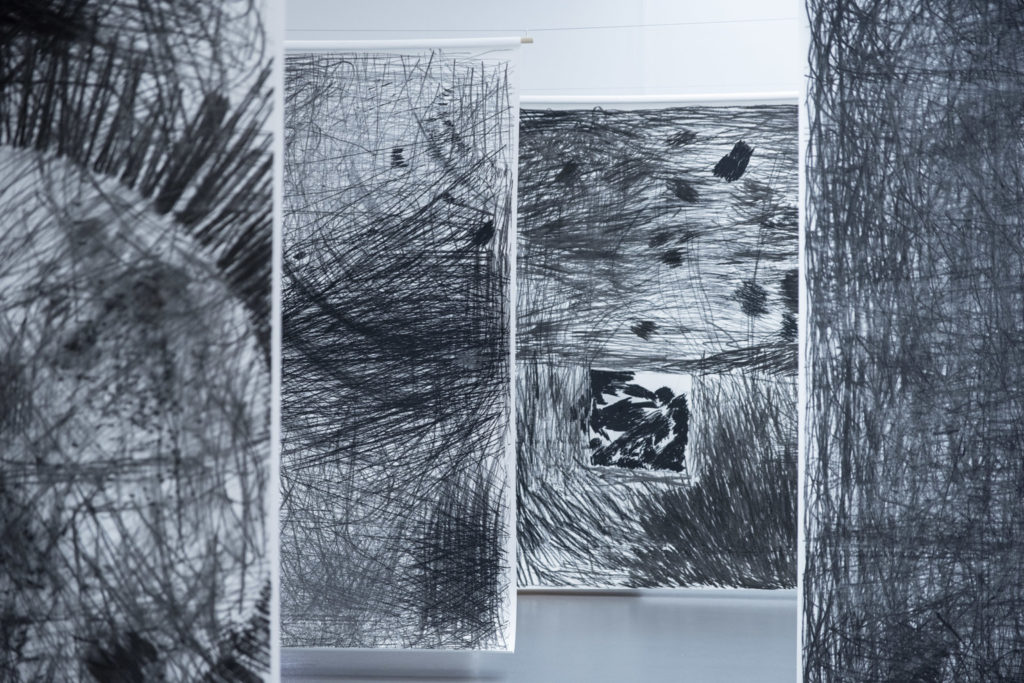 A series of drawings on paper hung banner like in a gallery.